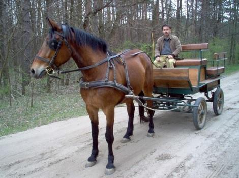 EinenSCHÖNenSAMS-TAGgewünscht117