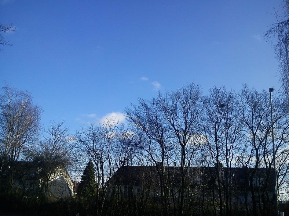 KLEINst((e))LICHTbaumSCHATTEN--SEELE(n)verästelungen9