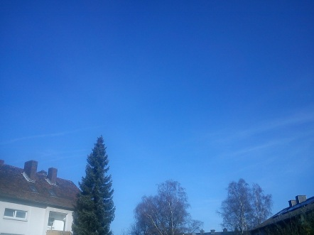 EICHHÖRNchenGARTEN--IDYLLE--HIMMEL(s)WölkchenGEFLÜSTER9