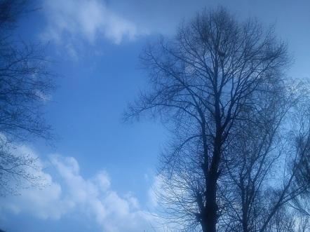 Regen--BOGEN--mystische--GARTEN--IDYLLE--WÖLKchen15
