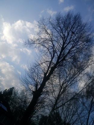 Regen--BOGEN--mystische--GARTEN--IDYLLE--WÖLKchen6