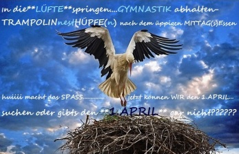 Cicogna in atterraggio sul nido (cartolina)