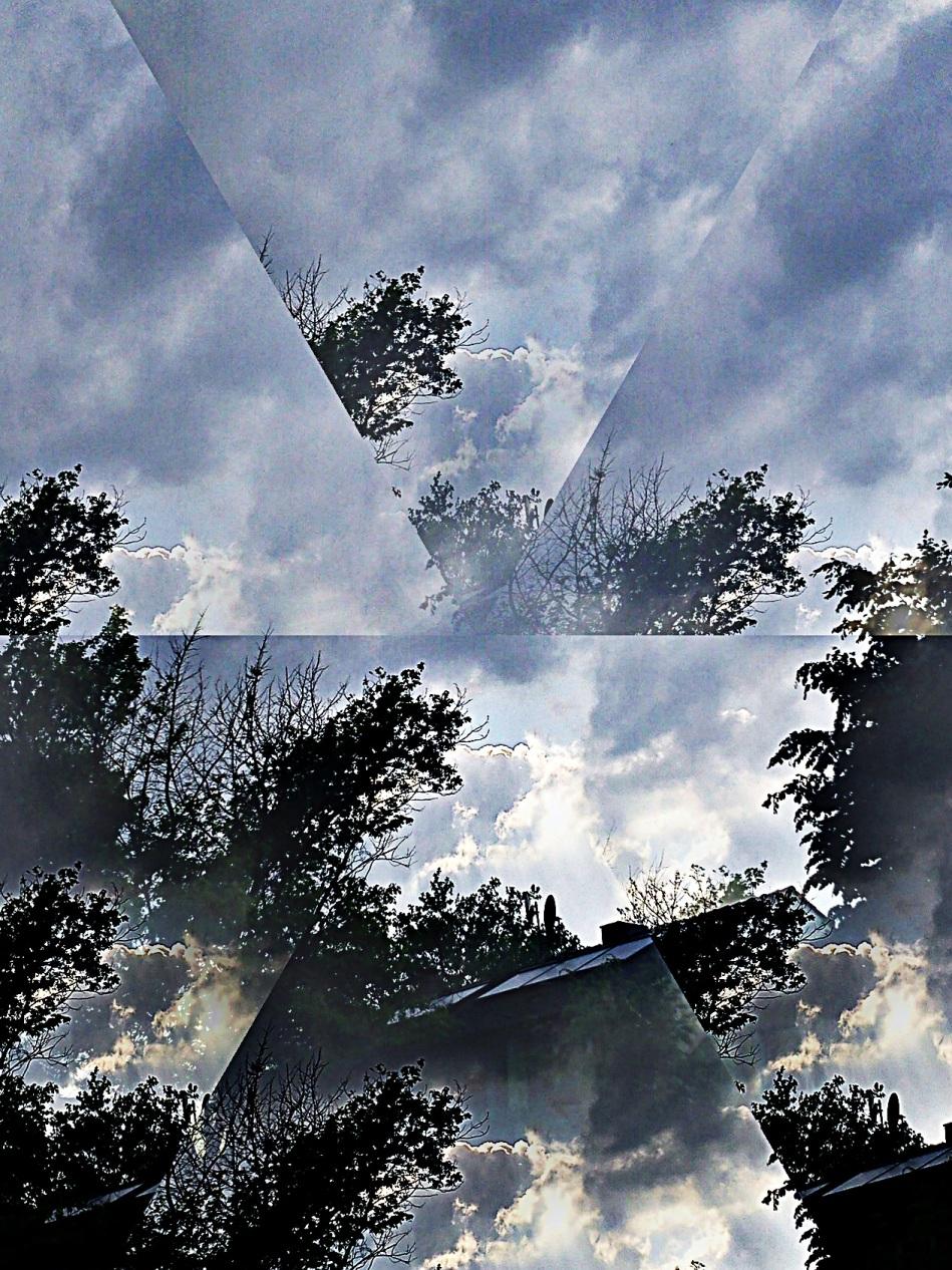 LIBELLE(n)feineSPINNE(n)BEINE--ALLer-l-EI(WOLKE(n)MOSAOK--GeBILDe18