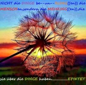 NICHT--die--DINGE((be--un))RUHIGen